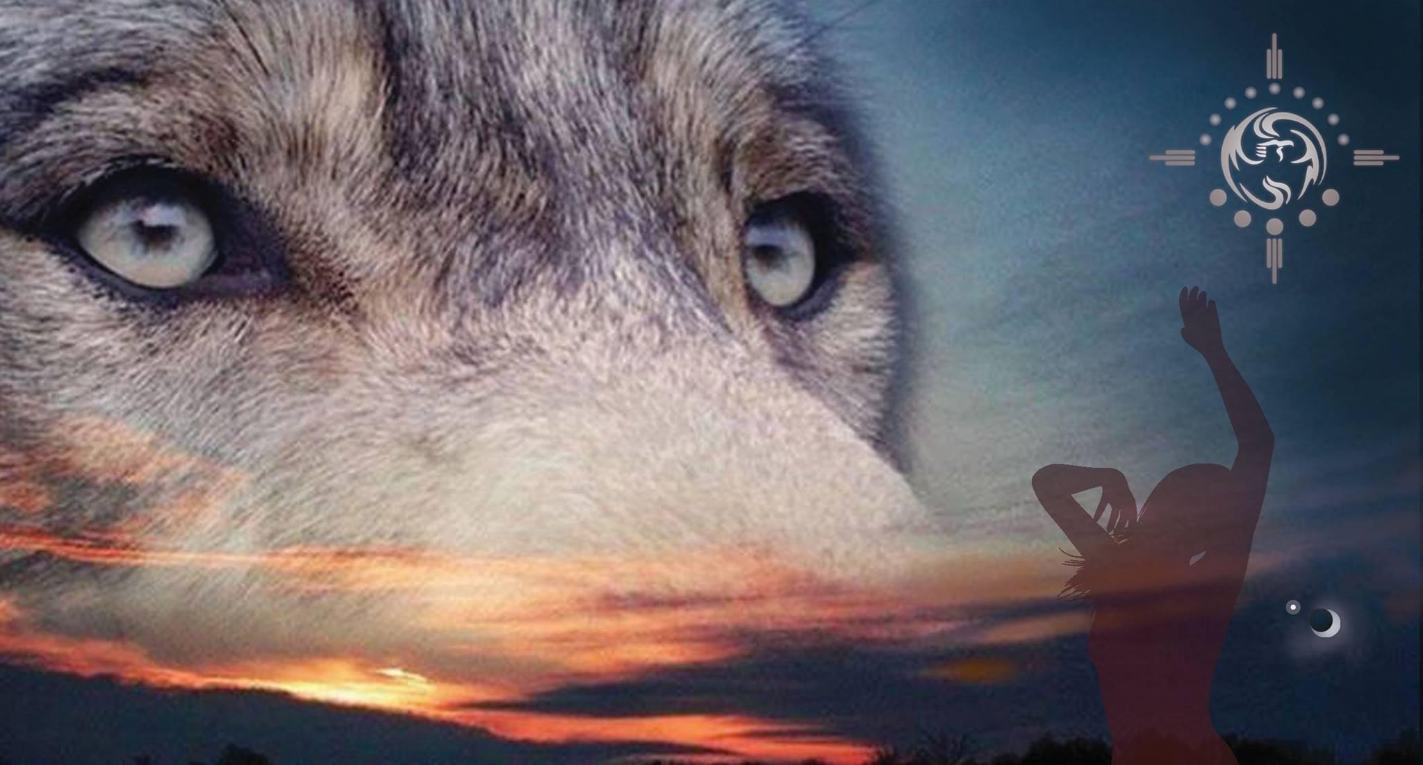 Danse avec les loups – Créativité et printemps avec Silvana Rigobon